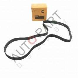 Belt V Ribbed- 4 BT/ 6 BT- 8PK- 1638- 3289034